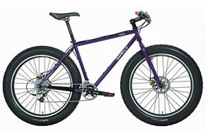 surly2